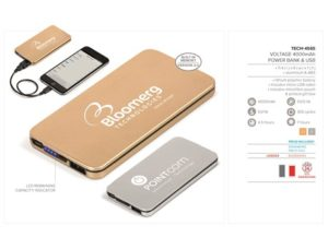 Voltage 4000mAh Power Bank & USB – Gold Only