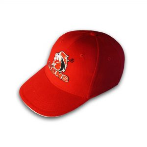 Lions –  Rugby Licence Headwear